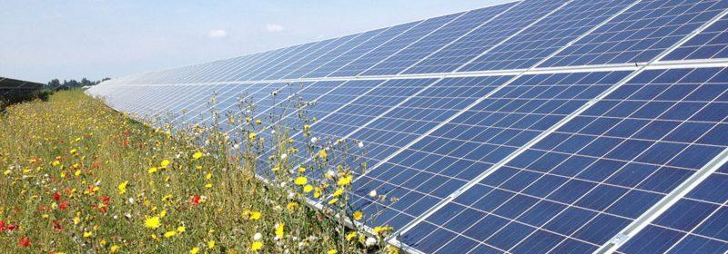 solar-field-lette